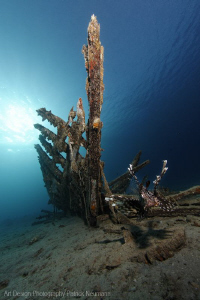wreck with Lionfish by Patrick Neumann 